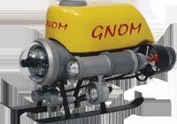 GNOM Standard